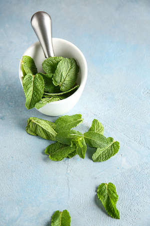 Mortar with pestle and fresh green mint on color background