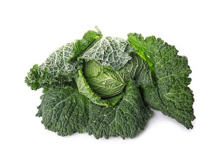 Tasty ripe cabbage on white background Stock Photo