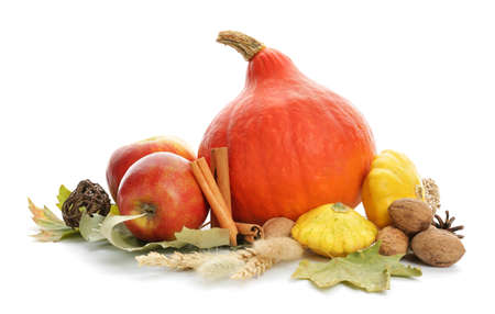 Autumn composition with fresh pumpkins on white background