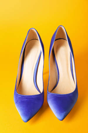 Stylish female shoes on color background