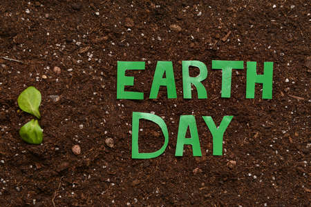 Plant and text EARTH DAY on soil Standard-Bild