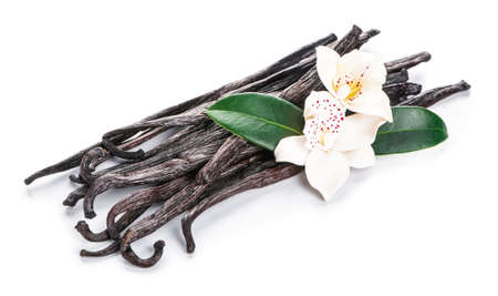 Aromatic vanilla sticks on white background Banque d'images