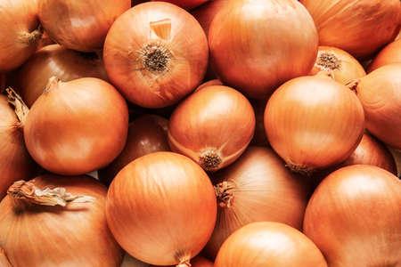 Fresh raw onion as background