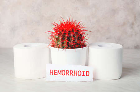 Toilet paper with cactus on light background. Hemorrhoids concept