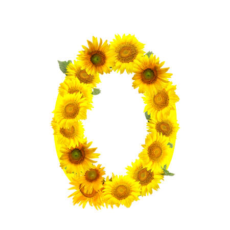 Figure made of beautiful sunflowers on white background
