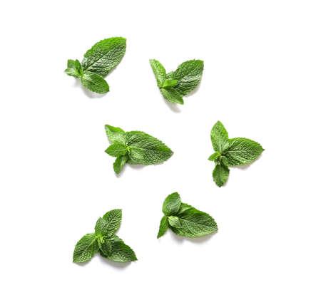 Fresh green mint on white background Stock fotó