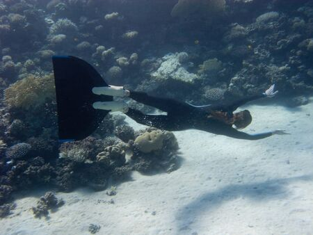 Beautiful freediver girl swims along coral reef of Red Sea