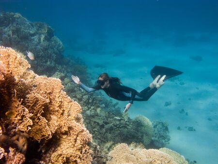 Beautiful freediver girl rises along coral reef from the sand bottom of the Red Sea Stock Photo - 10762728