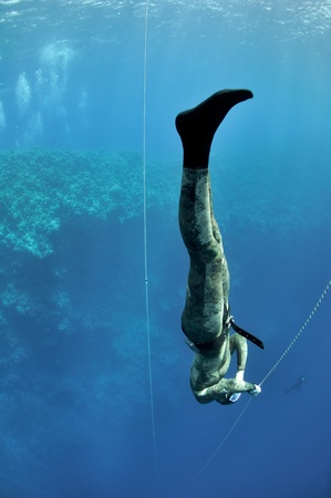 freediving: Freediver makes preparation dive near the safety line by breaststroke. Picture shows a part of freediving training session in Blue Hole, Dahab, Egypt Stock Photo