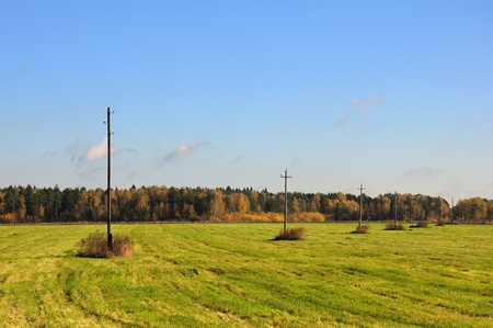The autumn meadow view with a line of telegraph poles. Stock Photo