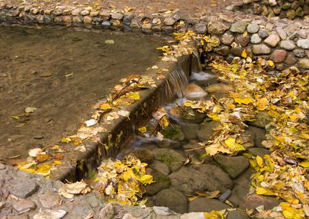 This is the relaxing picture of the small aftificial waterfall, filled with autumn leaves. photo