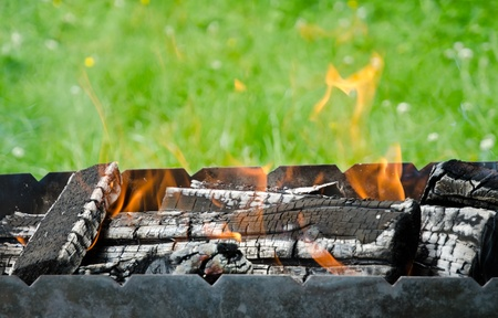 chargrill: Close up view of the fire tongues and firewoods in the barbecue on a green garden grass