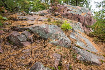 quartzite: Close up view of geological structures and pink stones at Killarney Provincial Park, Canada Stock Photo