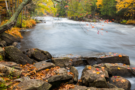 muskoka: Huge boulders and colorful fall forest on a riverside of Oxtongue river, Muskoka, Canada