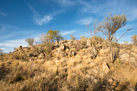 Rocky landscape of Kunene Region at Namibian winter during sunset Stock Photo