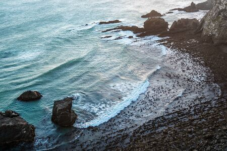 The Pacific Ocean waves at Nugget Point