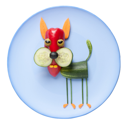 caricature cat: Funny vegetable cat on blue plate Stock Photo