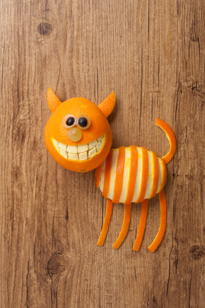 aliments droles: Cat made of orange and grape on wooden background
