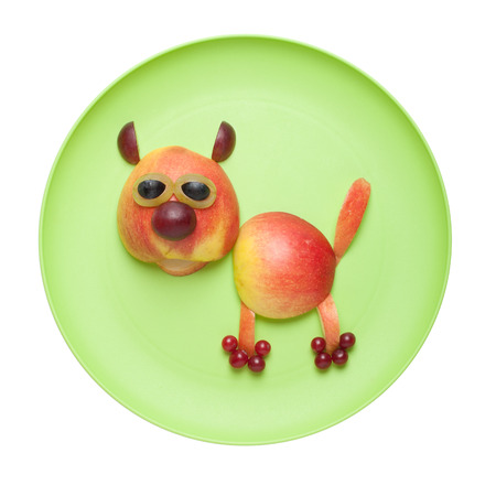 caricature cat: Cat made of fruits on green plate