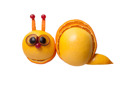 grape snail: Funny snail made of orange, grape on isolated background
