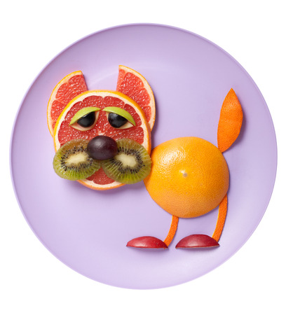 Funny cat made of grapefruit and orange on plate Stock Photo