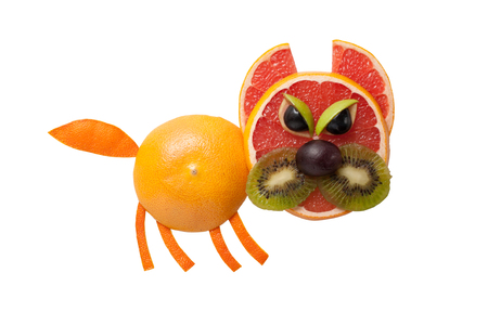 Angry cat made of fruits on isolated background