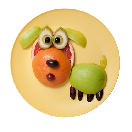 Surprised fruit dog made on yellow plate