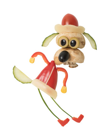 Happy dog in Christmas outfit made with vegetables