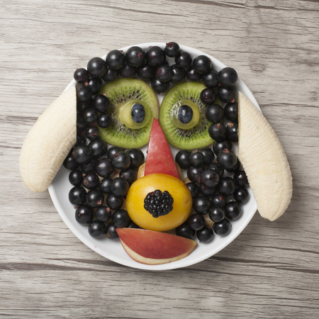 Dog made with juicy fruits on white plate 版權商用圖片 - 105020963