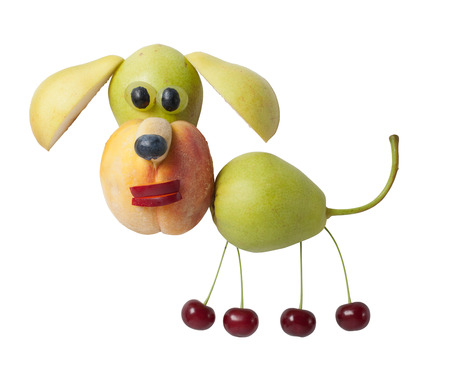 Idea of making a dog from fresh fruits Stock Photo