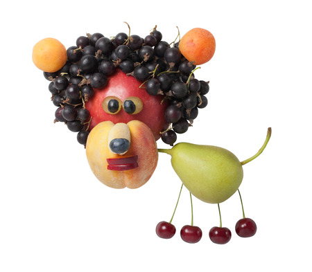 Funny lion created from various fruits