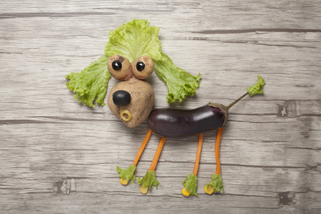 Idea of making a poodle from fresh vegetables Stok Fotoğraf