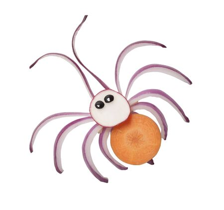 Funny spider made with fresh vegetables on white background