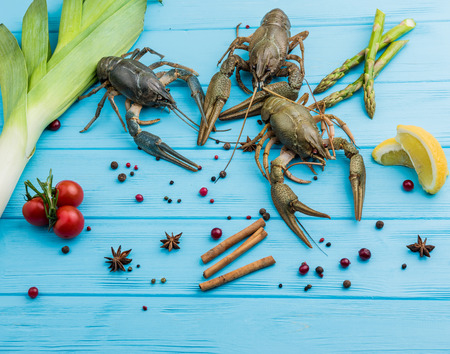 crayfish on a blue wooden surface Standard-Bild