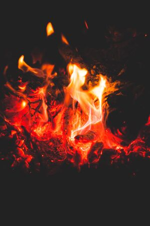 Tree branches dying in fire. Bright burning coals. Bright colorful glowing orange-red embers bonfire.