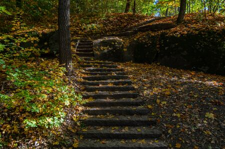 Staircase made stone in the autumn park outdoors. Close-up. Stair steps carved in granite. Yellowed fallen dry leaves.