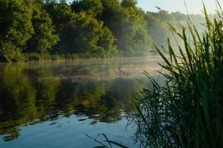 Fog disperses over beautiful river in early summer. Morning landscape by river in warm season. Picturesque beginning of new day in nature near blue water. Horizontal photo. Outdoors.
