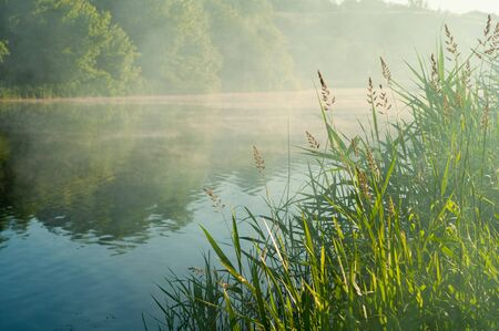 Misty morning over quiet riverbanks in summer. Beautiful nature wakes up. Pacification of foggy morning on river. Remote place of urban fuss for relaxation and reflection. Horizontal photo. Outdoors.