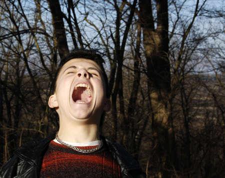 The shrill scream I. Stock Photo - 779325