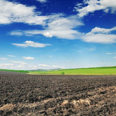 arable land: arable land and blue sky
