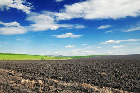 arable: arable land and blue sky