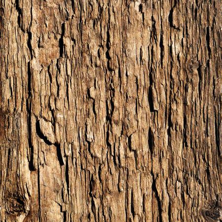 wooden cross: Wooden texture