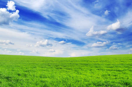 spring meadow and blue sky Stock Photo - 9107101