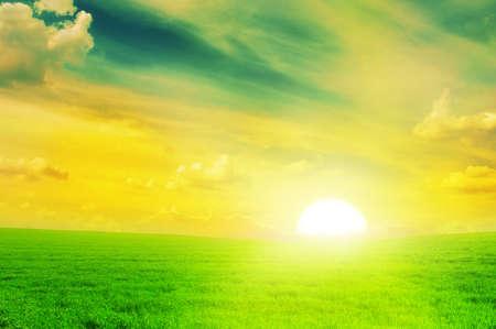 """wschód słońca: PiÄ™kne sÅ'oÅ""""ca na polu wiosny."""