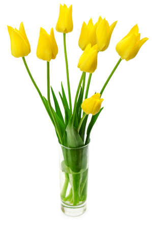 vase: Bouquet of yellow tulips in a vase isolated on white background.