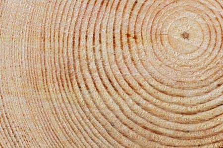 Holz-Textur Standard-Bild
