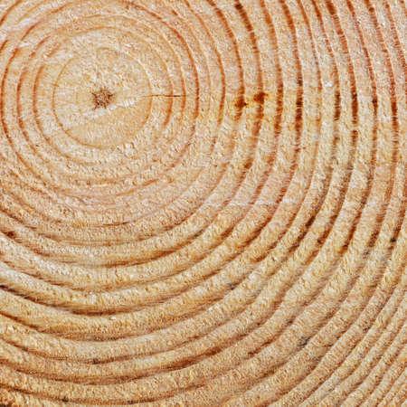 cross process: Wooden texture