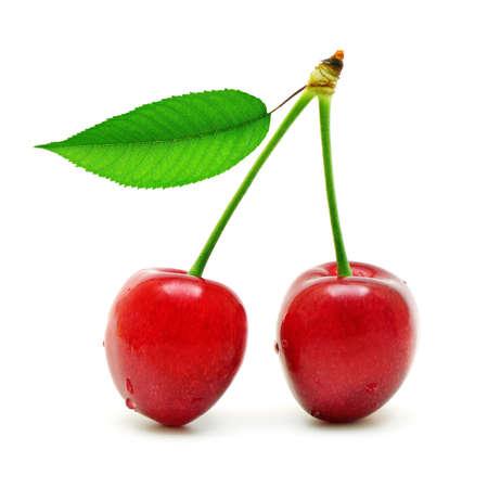 arbol de cerezo: cerezas dulces aisladas sobre fondo blanco