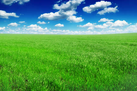 field and sky Stock Photo - 12067717