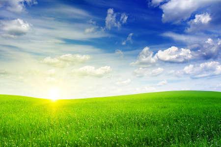 champ vert: champ vert et beau coucher de soleil Banque d'images